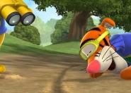 Tigris jojoja