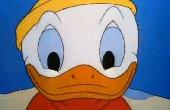 Donald hóhadjárata