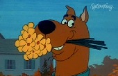 Scooby Doo - Kukac kutya